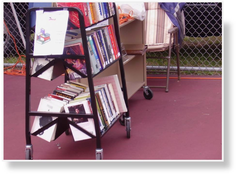 refill the book carts with the used books ready for sale.